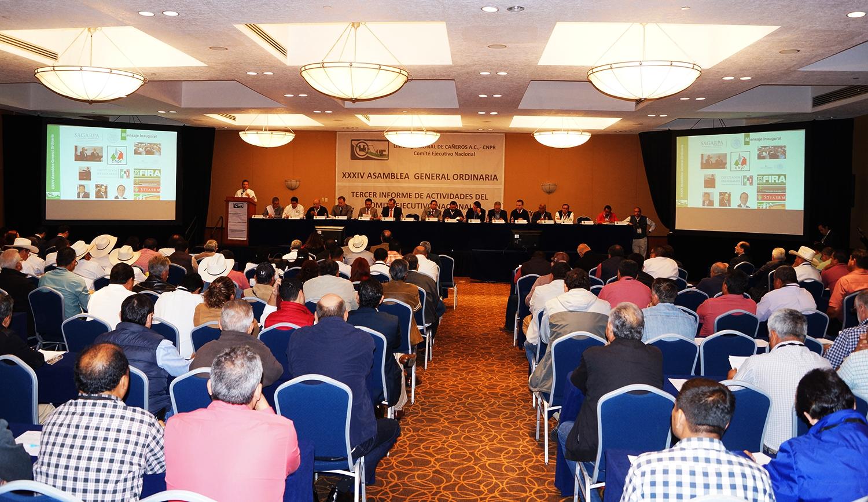 XXXIV Asamblea General Ordinaria, Informe de Actividades del Comité Ejecutivo Nacional 2014-2020