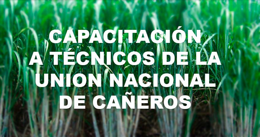 La UNC y SENASICA realizan Curso Taller Cultivo In Vitro para la Micropropagación en Caña de Azúcar